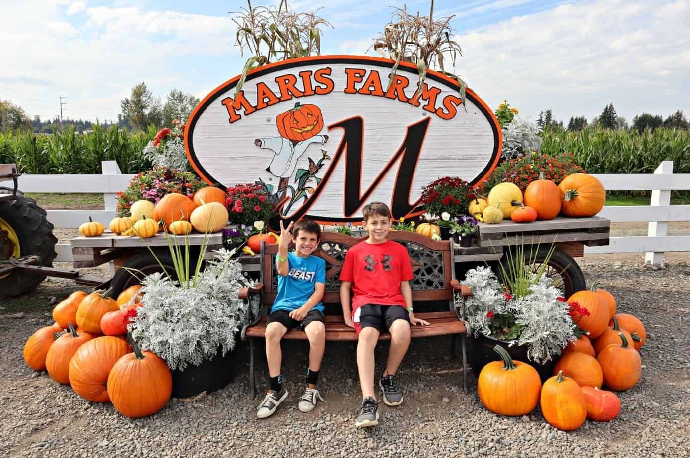 Fall Memories at Maris Farms Review in Pictures