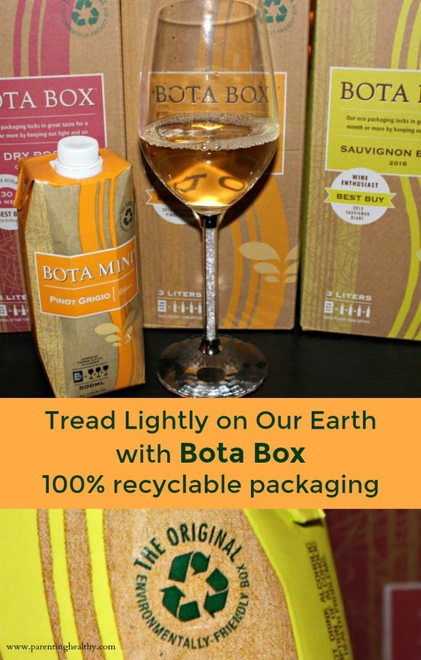 Eco Friendly Boxes Wine Packaging from Bota Box